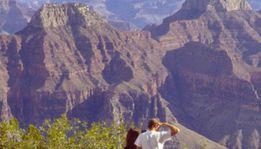 Grand Canyon National Park: Plane Flight + Ground Tour, Electric