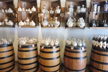 Tlaquepaque Food Tour and Tequila Tasting