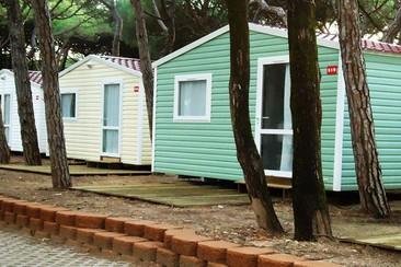 Mobile Camp Domino + Traslado en Orbitur Campsite