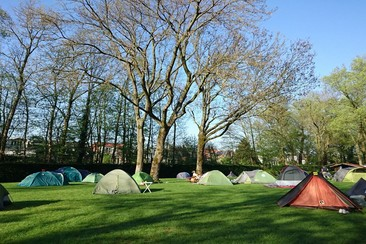 Tent Pitch @ Camping Vliegenbos