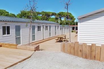 Cabina + Traslado en Camping 3 Estrellas