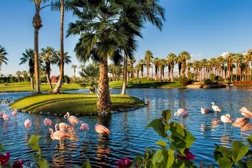 2e week-end : Pass VIP + Navette + JW Marriott Desert Springs Resort & Spa