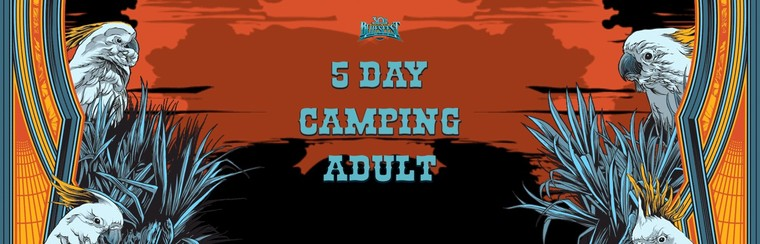 General Admission Ticket - 5 Day Festival & Camping Adult