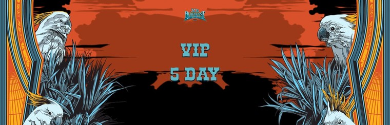 VIP Ticket - 5 Day Festival