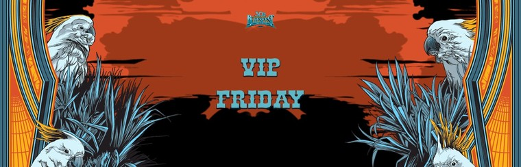 VIP Ticket - Single Day Festival (Friday)
