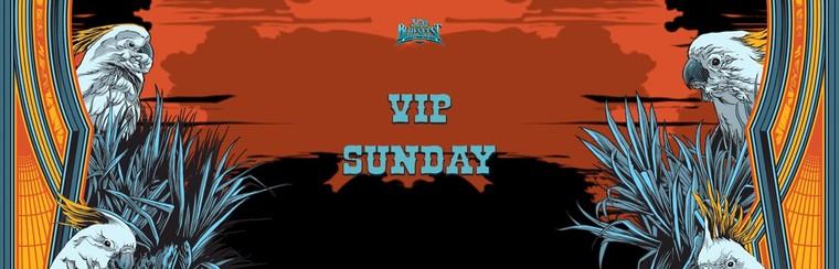 VIP Ticket - Single Day Festival (Sunday)