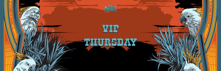 VIP Ticket - Single Day Festival (Thursday)