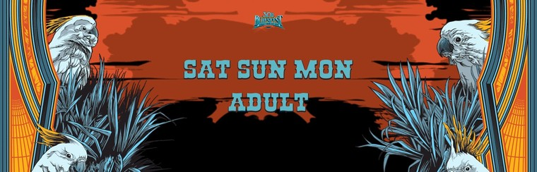 General Admission Ticket - 3 Day Festival Adult (Sat+Sun+Mon)