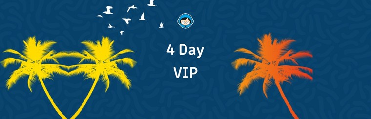4 Day VIP Ticket