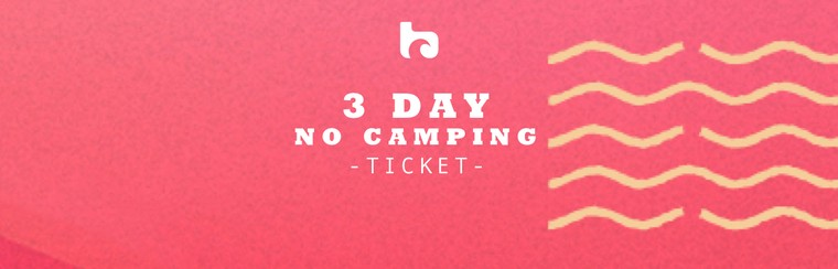 3 Day No Camping Ticket
