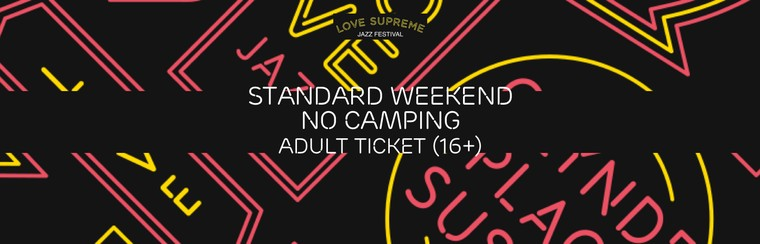 Standard Weekend No Camping Adult Ticket (Age 16+)