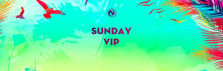 VIP Sunday Ticket