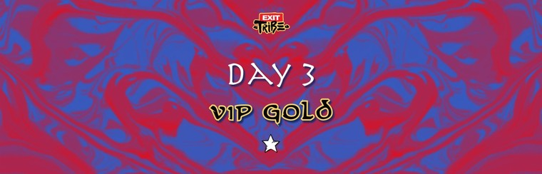 Day 3 | VIP Gold Ticket