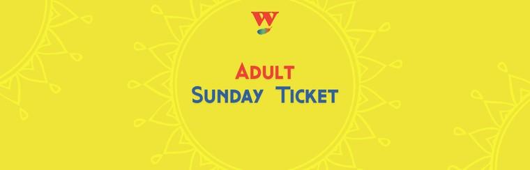 Tagesticket Sonntag für Erwachsene