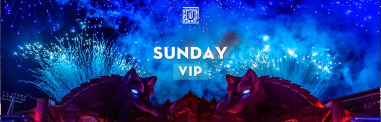 Sunday VIP Ticket