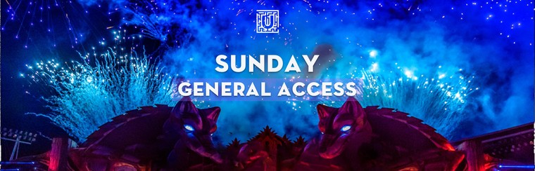 Sunday General Access Ticket