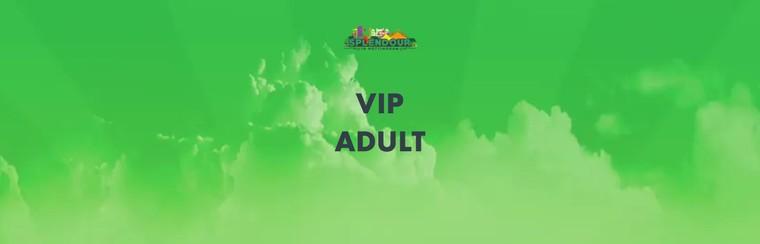 VIP Ticket | Adult