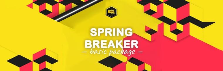 3-Nights Basic Spring Breaker Package