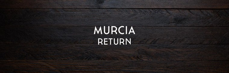 Murcia Return Coach Travel