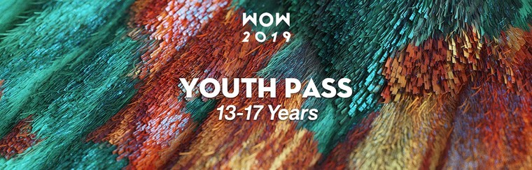 Youth Festival Pass (13-17 Years)