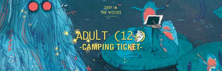 Adult (12+) Camping Ticket