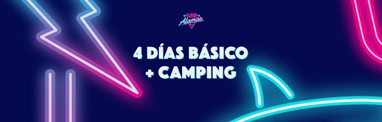 4-Day Basic Pass + Camping