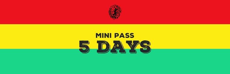 Mini-Pass 5 Days