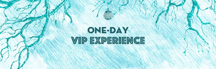 One-Day VIP Experience