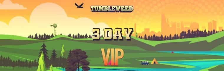 3 Day VIP
