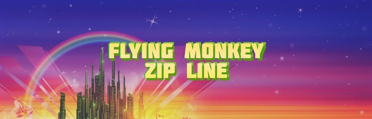Flying Monkey Zip Line