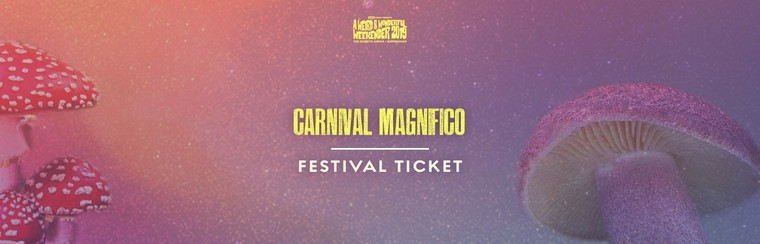 Carnival Magnifico - Festival Ticket