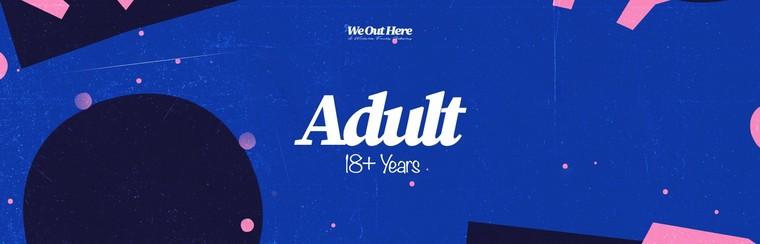 Adult (18+) Festival Ticket