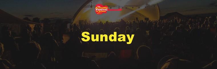 Day Ticket - Sunday