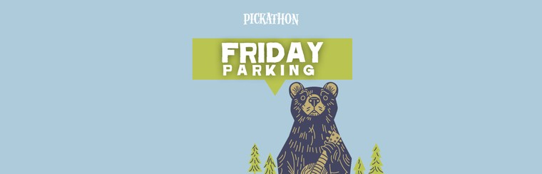 Friday Parking Ticket