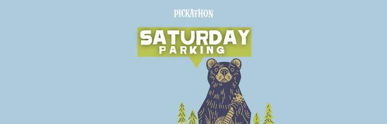 Saturday Parking Ticket