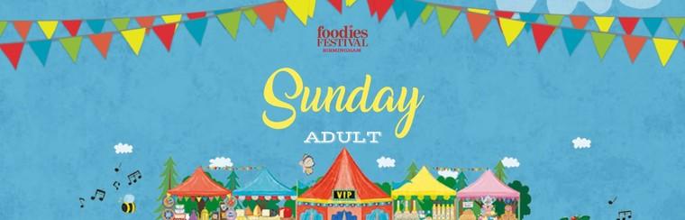 Sunday Adult Ticket