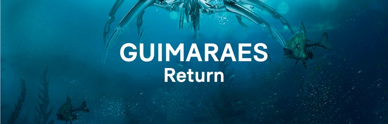 Guimaraes Return Coach Travel