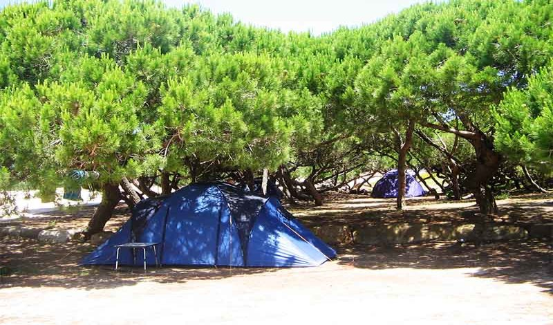 Ticket + Tent Pitch + Shuttle Pack at Orbitur Campsite