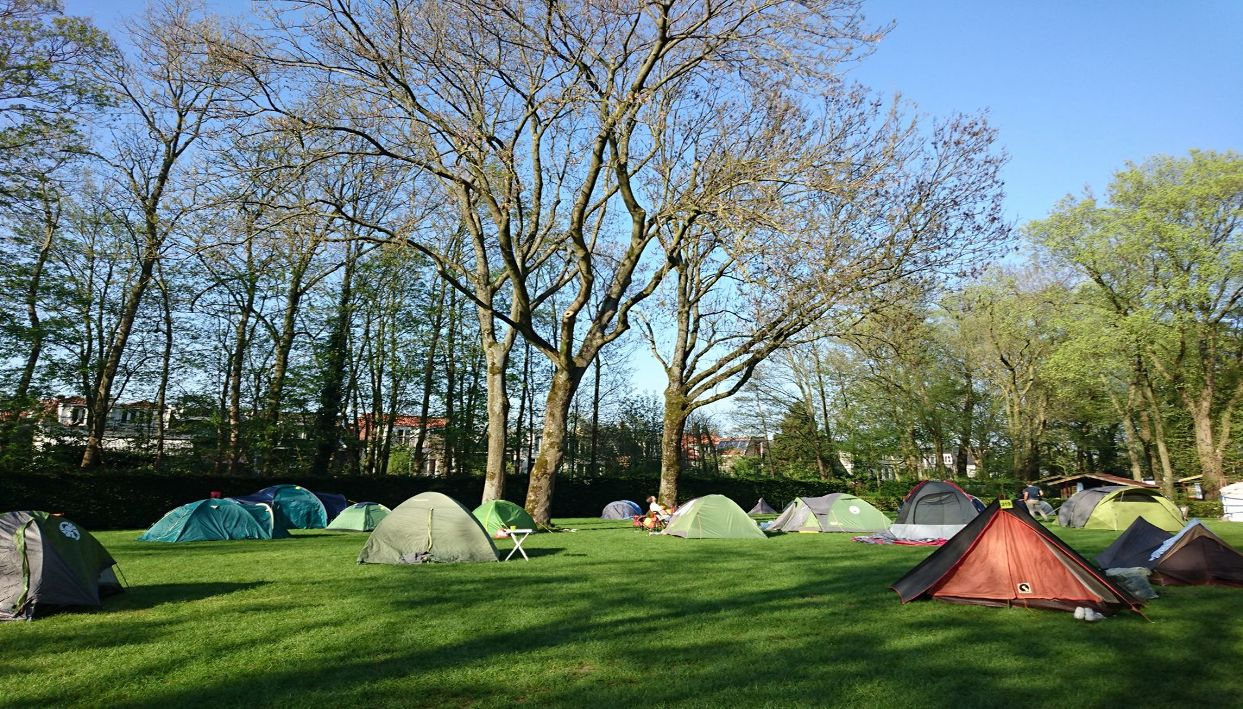 Ticket + Tent Pitch @ Camping Vliegenbos