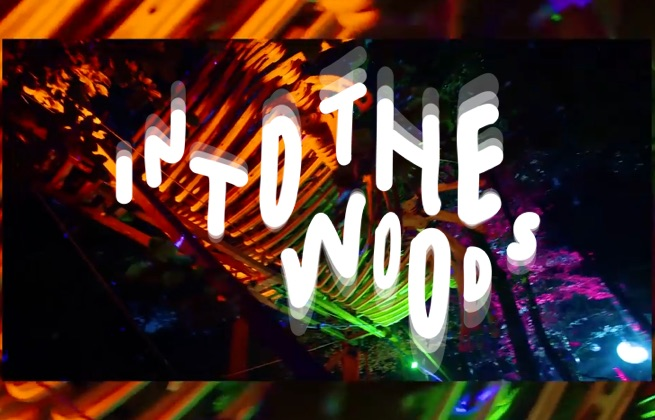 Packages Billet + Hôtel - Into In The Woods