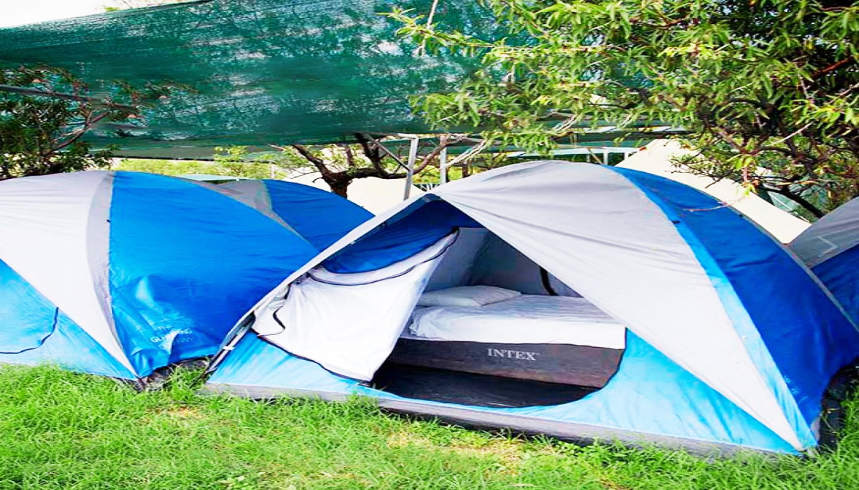 Ticket + Easy Tent  @ Campfest Glamping